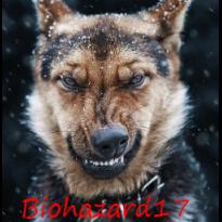 Biohazard17
