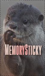 MeMoRy Legend
