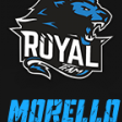 Morello ROYAL