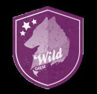 Wild Geese [WG] - RPG4