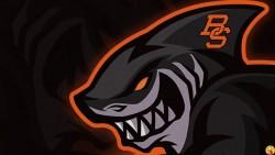 SharkBlack