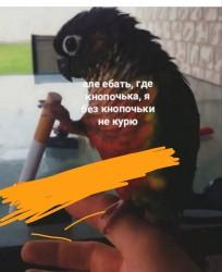 kRixN