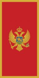 Dalisevich