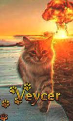 Veycer