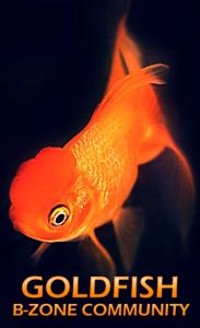 xGoldfish